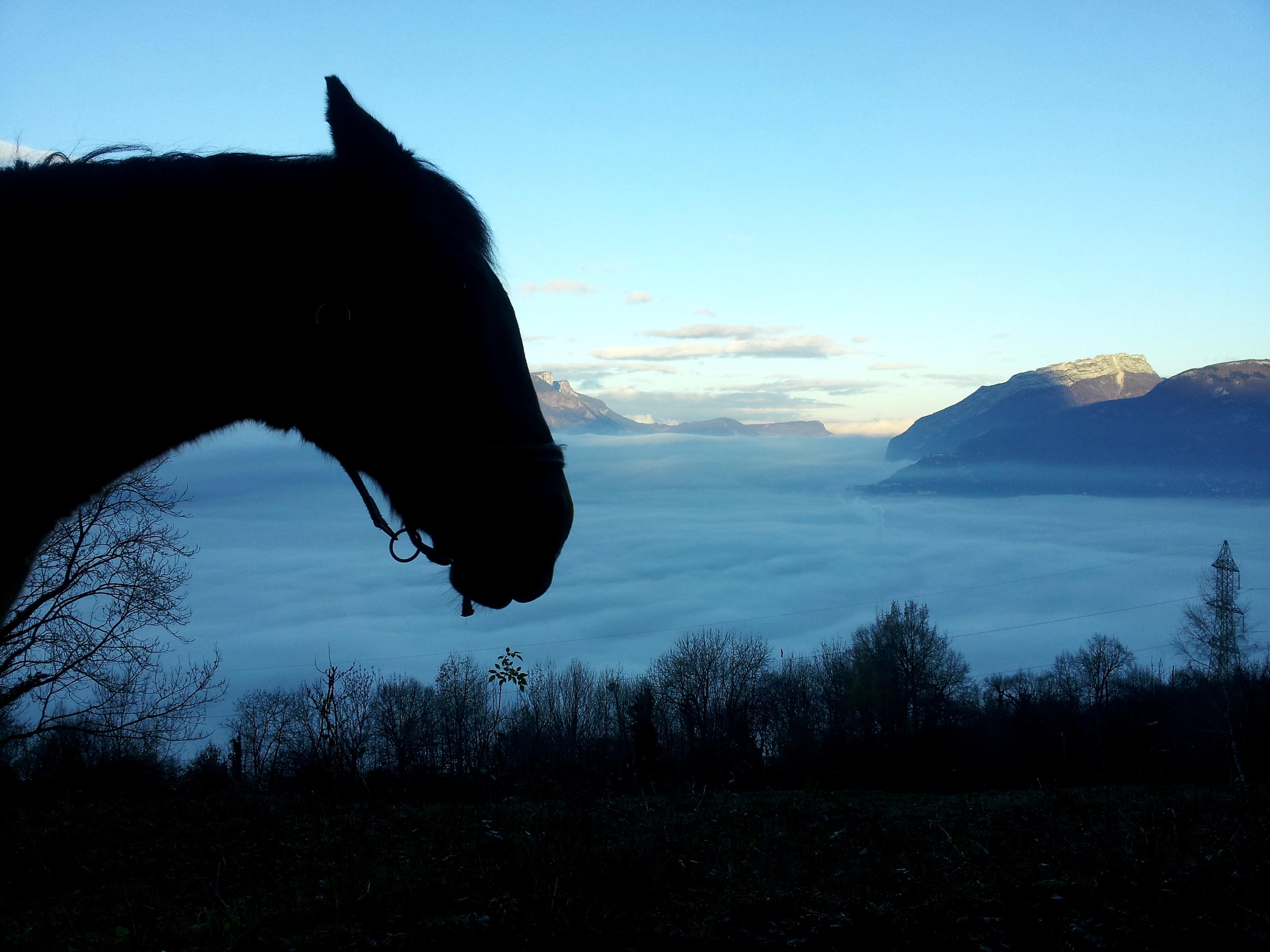 Romage retour Murier STL 06 dec 2015 Matin brouillard mer de nuage (57)