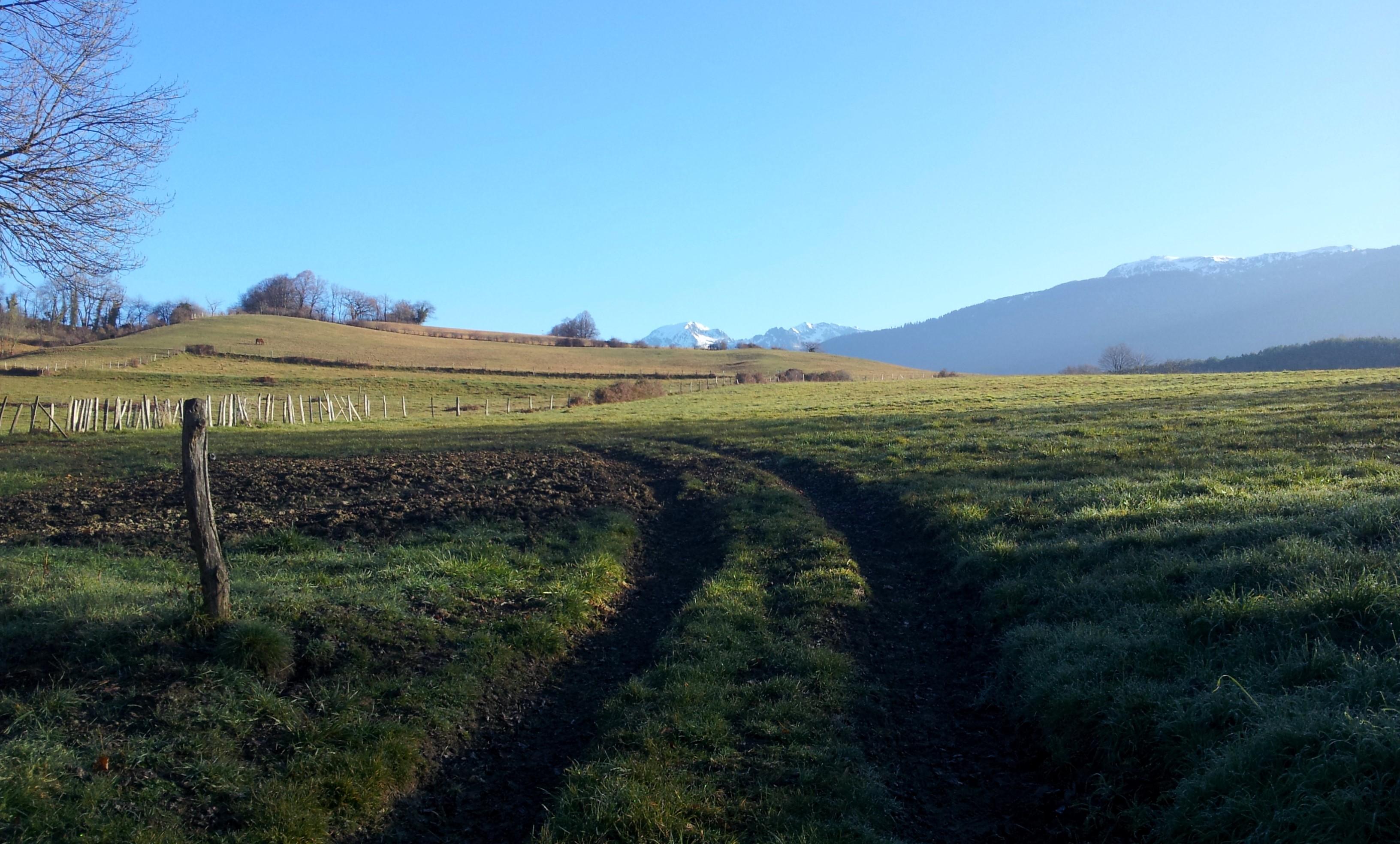 les cretes d'Herbeys en entier 20km cap 20 dec 15 (194)