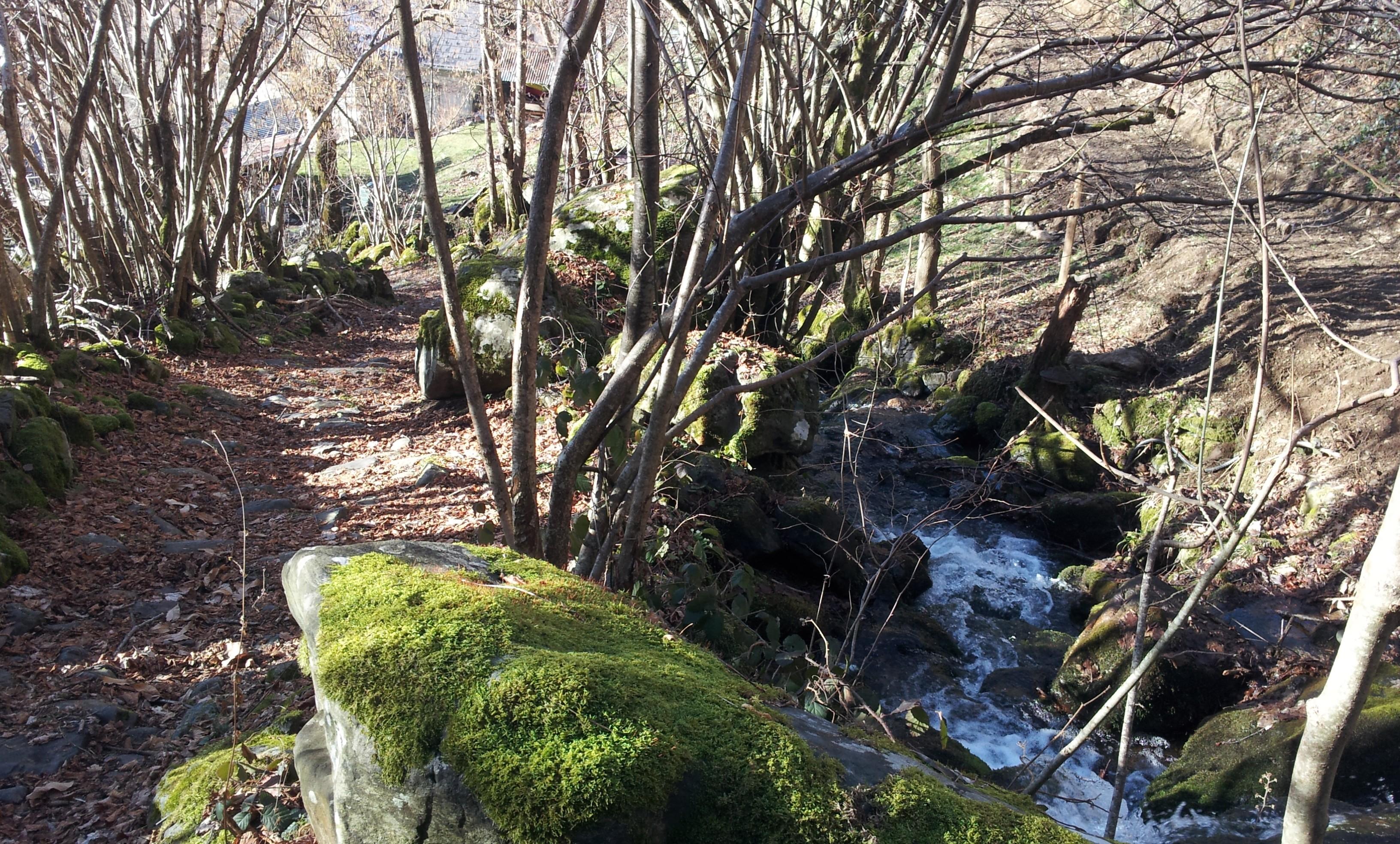 sechilienne mont sec col madeleine 24 janv 16 cap (167)